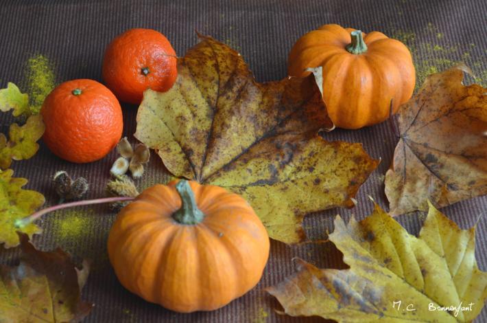 Couleurs d automne e monsite 2