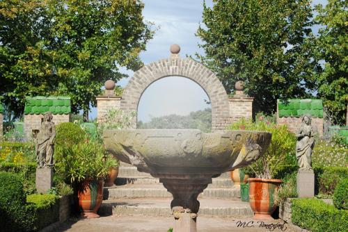 jardin-vintage-.jpg