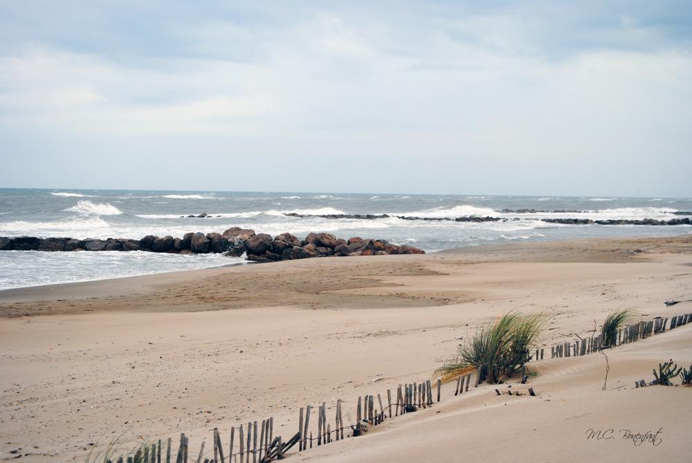 Photos de mer oc an b teaux port c te plage sea oceans for Plan grau du roi